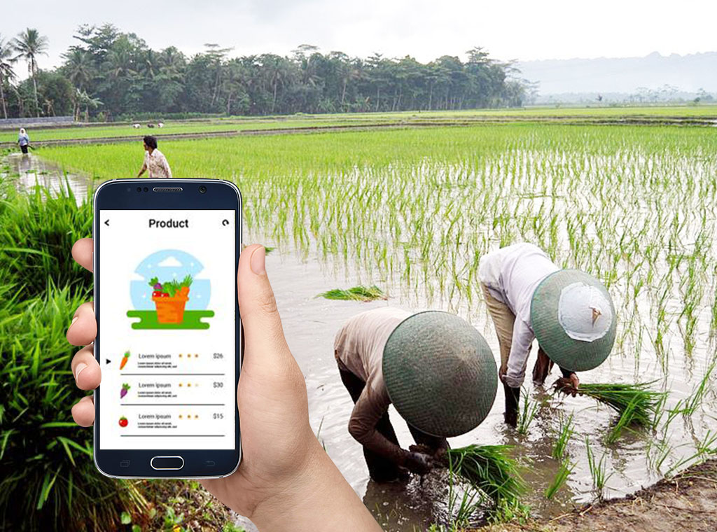 creative industry,startup,agriculture,technology,agritech